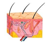 fotoepilacja skora przed zabiegiem