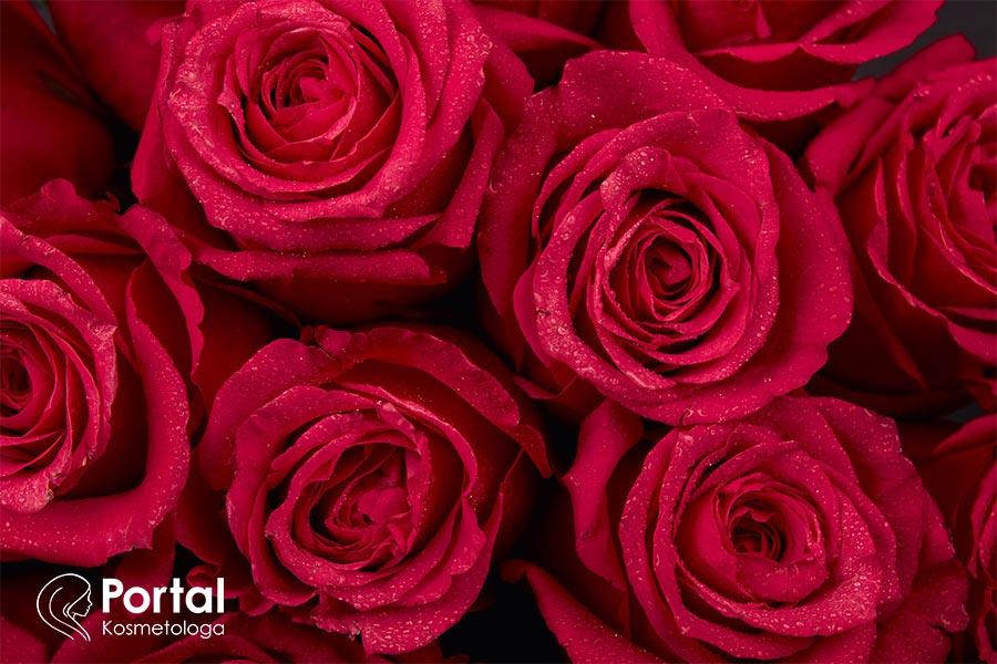 Woda różana - właściwości pielęgnacyjne
