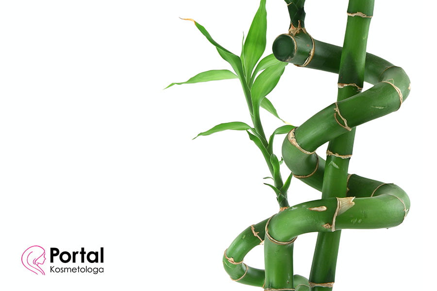 Bambus w kosmetyce