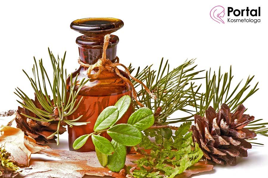 Olejek pichtowy - właściwości i zastosowanie